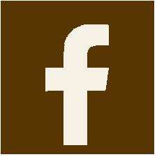logo facebook retro